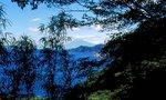 今山遊歩道から富士を望む